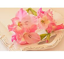 Gladiolas In Pink Photographic Print