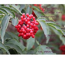 Elderberry Blossom With Quote Photographic Print