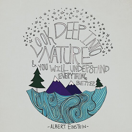 Einstein: Nature by Leah Flores