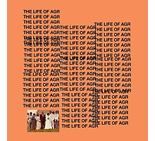 the life of AGR Photographic Print