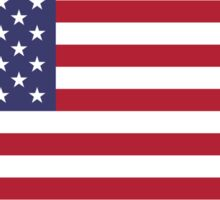 US Flag Sticker