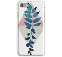 Geometry and Nature I iPhone Case/Skin