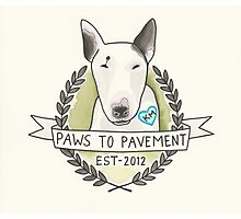 Paws To Pavement Dog Walking San Diego Bull Terrier OG Photographic Print