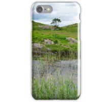 river reeds and lake on the kerry way iPhone Case/Skin