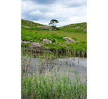 river reeds and lake on the kerry way Photographic Print