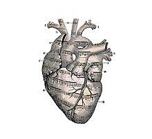 Music Heart  Photographic Print