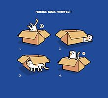 Practise makes purrfect by Randyotter