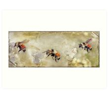 Dance Of The Bumble Bees Art Print