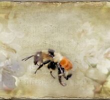 Dance Of The Bumble Bees by Crista Peacey