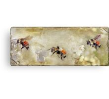 Dance Of The Bumble Bees Canvas Print
