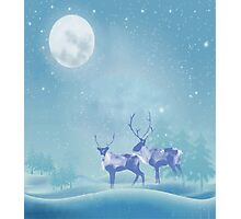 Snowy Winter Scene  Reindeer Animal Photographic Print