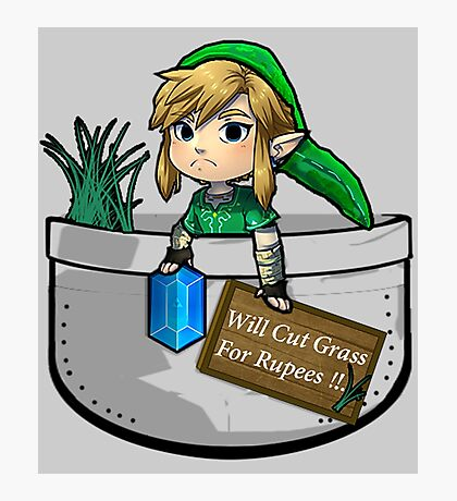 "Zelda ""Will Cut Grass For Rupees"" Photographic Print"