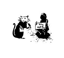 Why not Banksy Photographic Print