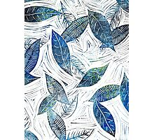 Blue Leaves of Winter Photographic Print