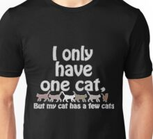 I Only Have One Cat, But My Cat Has A Few Cats Unisex T-Shirt