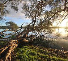 Lake Bambun - Gin Gin - Western Australia by salsbells69