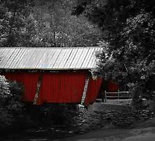 *The Old Covered Bridge* by Darlene Lankford Honeycutt