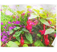 Container Flowers Poster