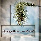 What we think, we become !  by Bine