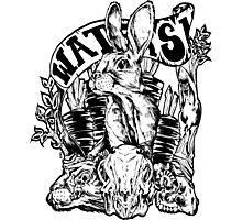 Rabbit Skulls Photographic Print