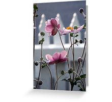 Japanese Windflowers Greeting Card