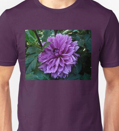 Purple Haze Dahlia Unisex T-Shirt