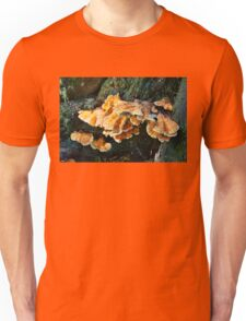 Colorful Fungus Unisex T-Shirt