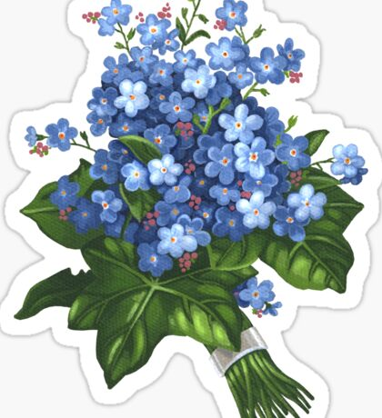 Forget-me-not - acrylic Sticker