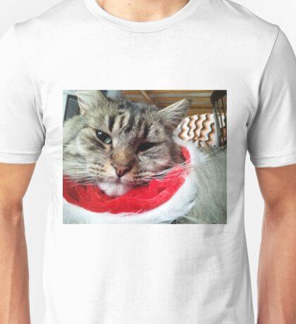 Loki dressed for Xmas Unisex T-Shirt
