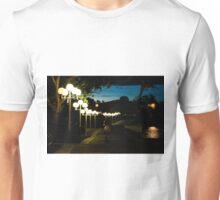 Evening Walk Unisex T-Shirt