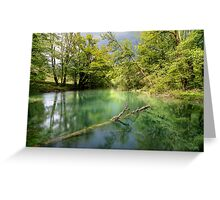 peace of nature Greeting Card