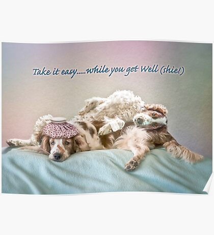 Welshie get well soon Poster