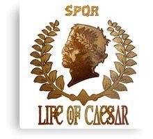 Caesar Insignia Metal Print