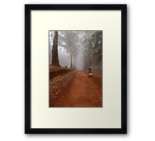 UP CLOSE: THE  BICYCLE MAN AND THE LANTERN Framed Print