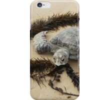 Loving the environment Turtle iPhone Case/Skin