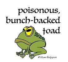 Poisonous Bunch Backed Toad Photographic Print