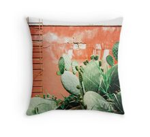 Closeup on Cacti Growing in Front of Shabby Red Wall Shot on Porta 400 Throw Pillow