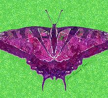 BUTTERFLY PURPLE by Jean Gregory  Evans