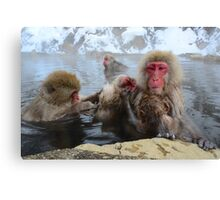 Family grooming time Canvas Print