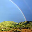 Rainbow in Rhino Park, South Africa by mypic