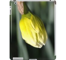 About to Stretch - Daffodil Bud iPad Case/Skin