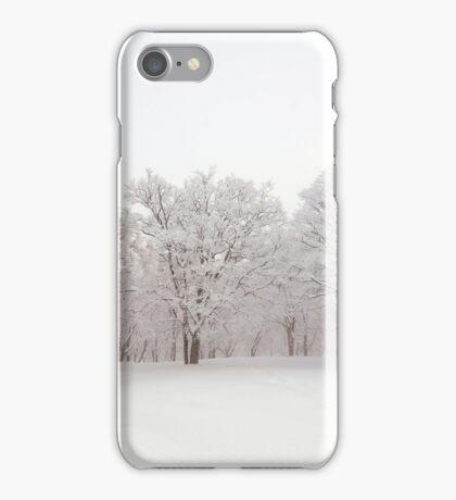 Snow scene Japan iPhone Case/Skin