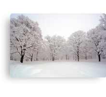Snow scene Japan Canvas Print