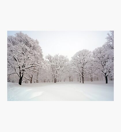 Snow scene Japan Photographic Print