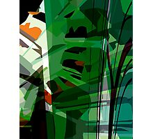 Greeny leafy graphic design Photographic Print