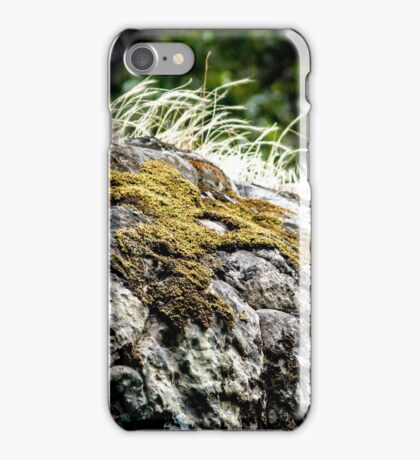 Mosses, rocks and grasses iPhone Case/Skin