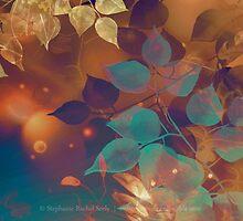 October Spark I by Stephanie Rachel Seely
