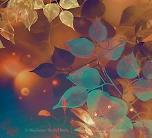 October Spark I by Stephanie Rachel Seely