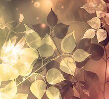 October Spark II by Stephanie Rachel Seely