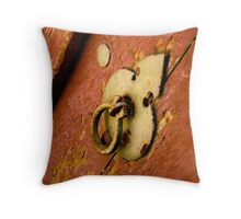 Weathered Door Throw Pillow